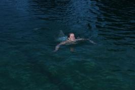 Nachtschwimmen 2013_8
