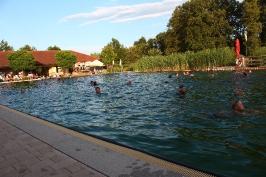 Nachtschwimmen 2019_31